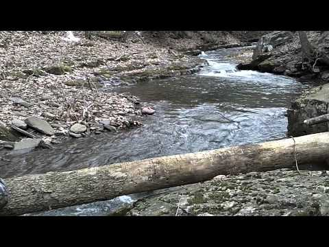 Native fishing in west virginia youtube for West virginia out of state fishing license