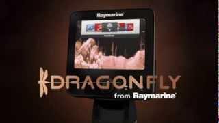 Видео обзор Raymarine Dragonfly-7