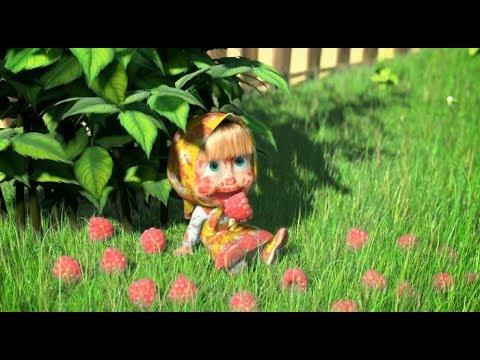 Cô bé masha và chú gấu xiếc   Cô bé siêu quậy và chú gấu xiếc   Masha thu hoạch hoa quả