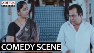 Telugu Comedy Scene By Brahmanandam  Jhansi From Simha