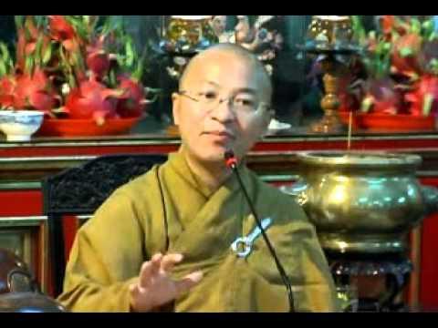 Hạnh phúc khi là Phật tử (01/12/2009) video do TT Thích Nhật Từ giảng