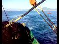 Pesca De Cerco Espectacular Lance Visto Desde Un Sonar