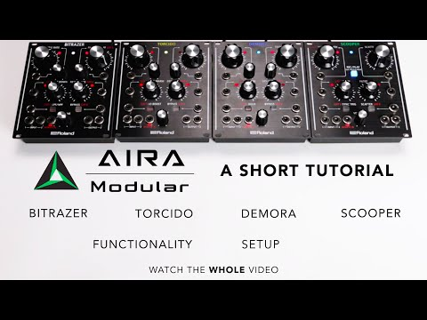 Roland Aira Torcido Modular Distortion, Table-Top and Eurorack Module (Refurbished)