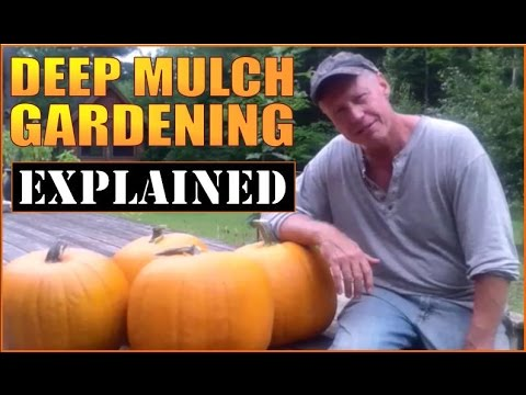 DEEP MULCH / BACK TO EDEN GARDENING EXPLAINED