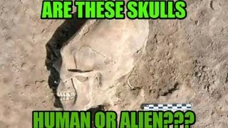 ['Alien' Skulls Found At Sonora, Mexico, Ancient Burial Site ...]