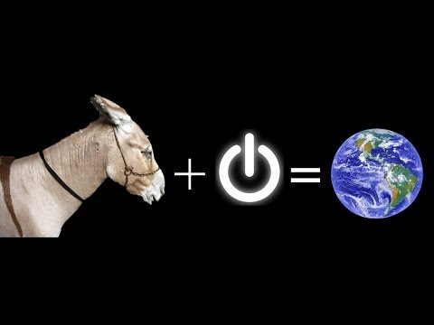 Turkey: Where donkeys power the internet - BBC News