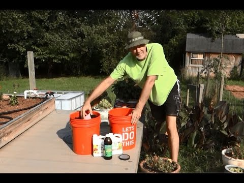 Worm Bin Update - Worm Casting Compost Tea Recipe