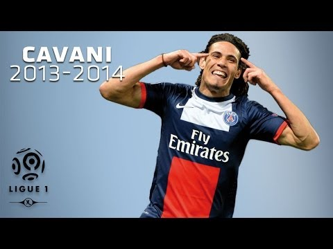 Edinson Cavani's 12 goals since the beginning of the season / 2013-2014