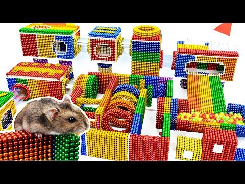 DIY - Build Amazing Maze For Funny Hamster Pet With Magnetic Balls (Satisfying) - Magnet Balls