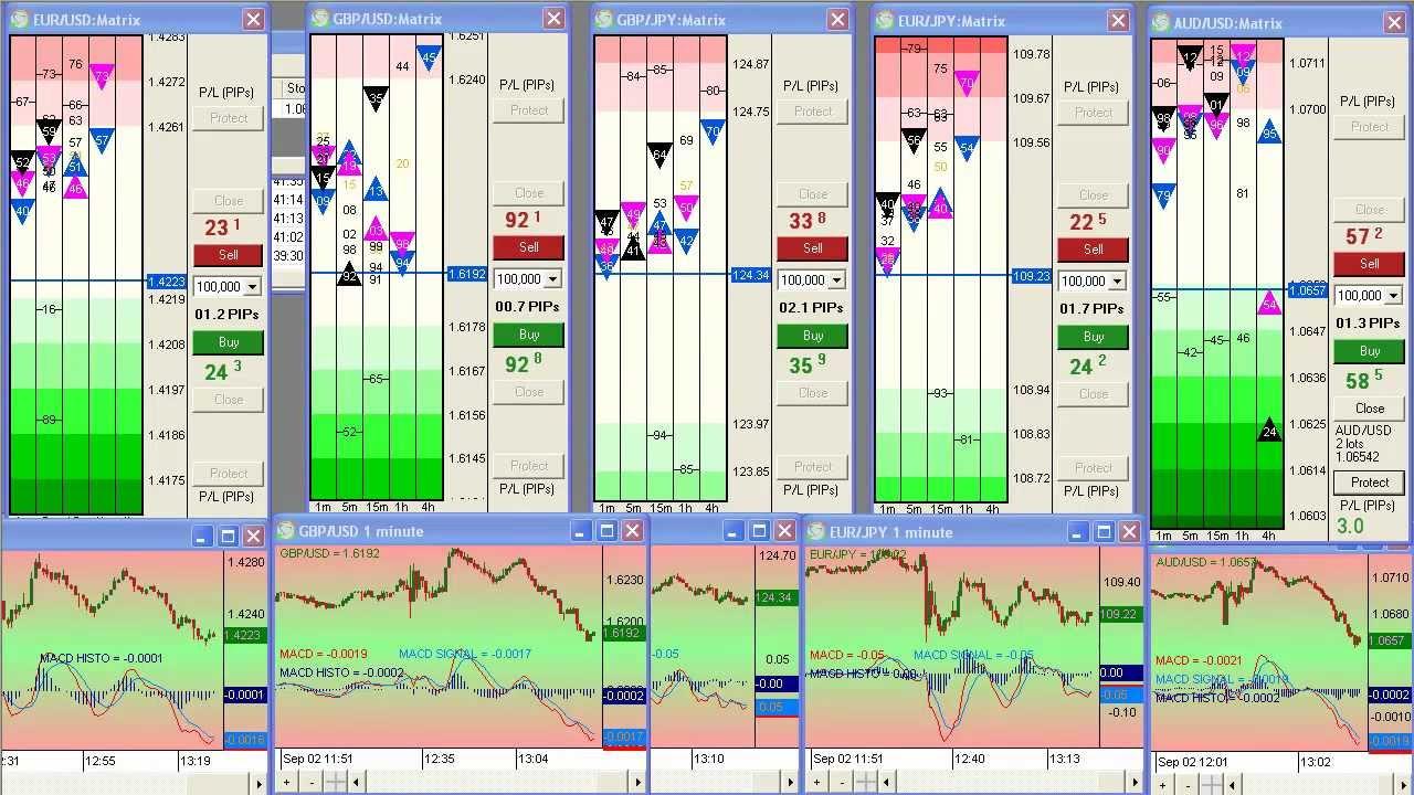 Forex market watch software