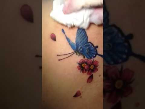 Hình xăm bướm (016555 30822)