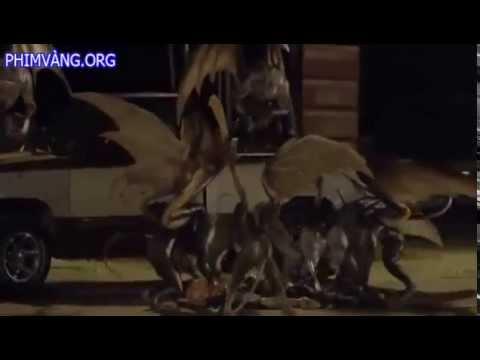 Quái Vật Khỉ Ăn Thịt Người   Flying Monkeys 2013) Vietsub   Tập 4   Server 5, quai vat khi an thit n