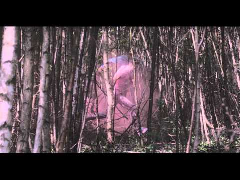 Thumbnail of video We Have Band - Tired Of Running (Official Music Video)
