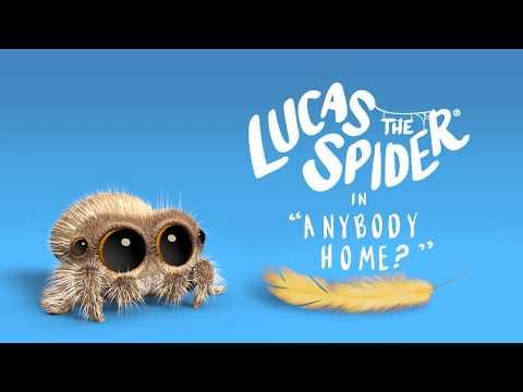 Pavouk Lucas - Je někto doma?