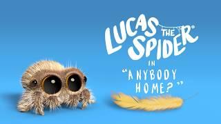 Pavúk Lucas - Je niekto doma?