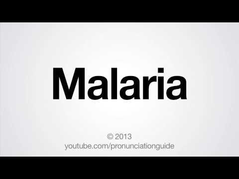 How to Pronounce Malaria