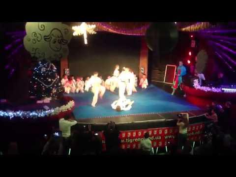 Показательные выступления группы на Степовой. Новый Год 2015