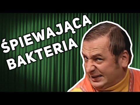 �PIEWAJ�CA BAKTERIA - TAK M�WI�A MI CIOCIA