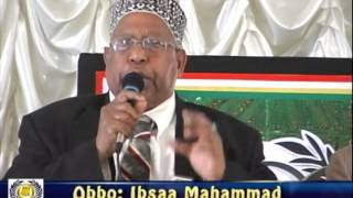 Full Program Videos: The 50th Year Anniversary of the Birth of the Afran Qalloo Oromo Cultural Movement in Oromia (June 2012)
