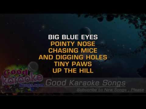 The Fox -  Elton John ( Karaoke Lyrics )