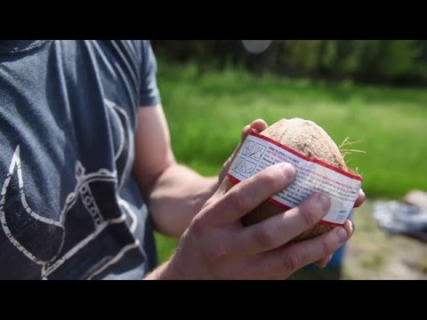 How to open a coconut... With a 460 XVR