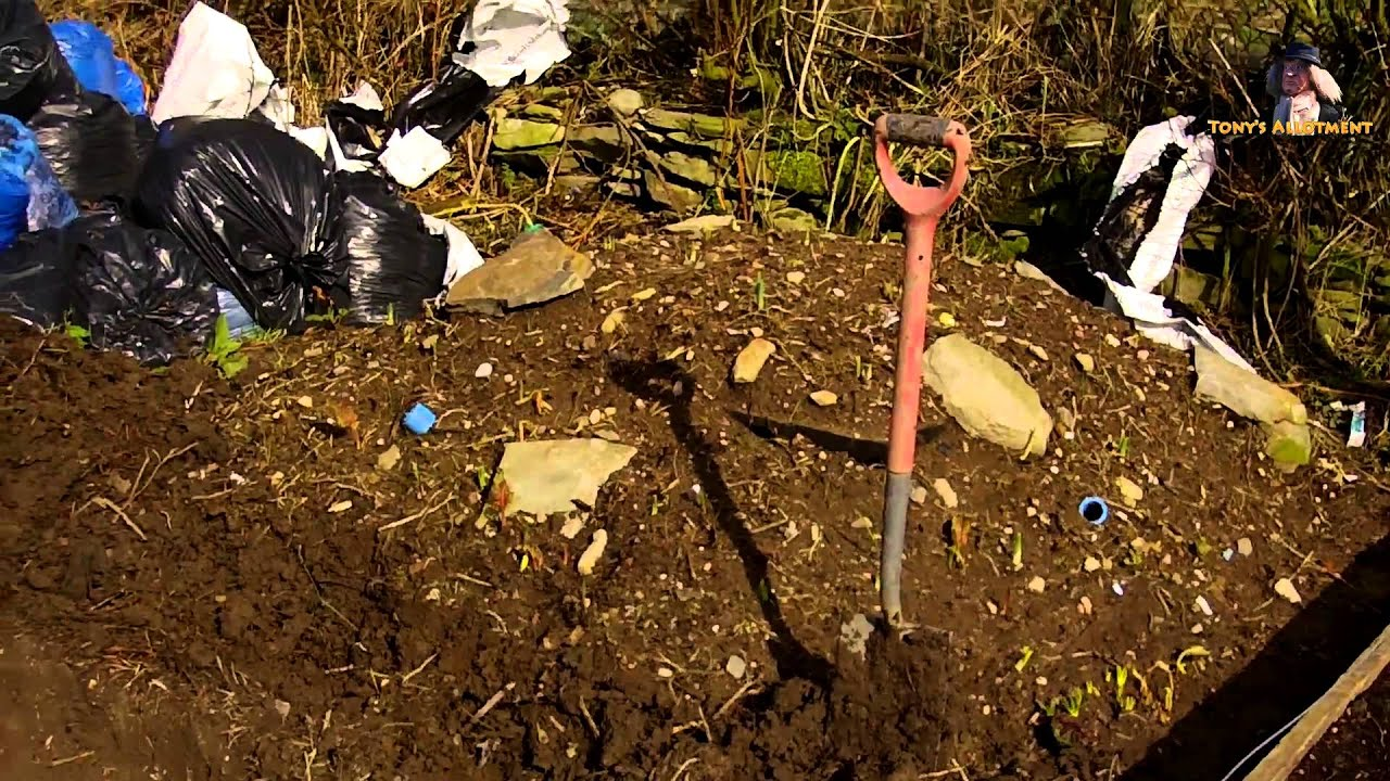 How To Build A Small Wildlife Pond Youtube