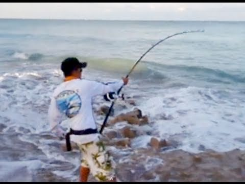 Big game fishing from shore youtube for Shark fishing games