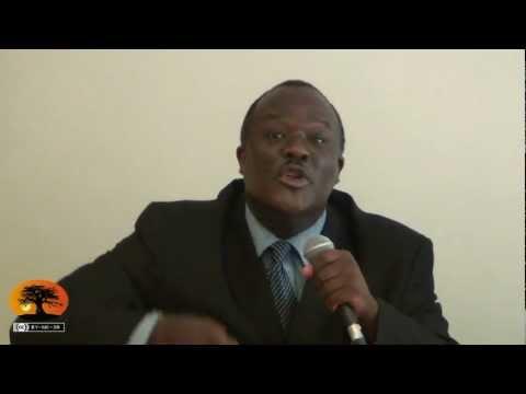 Tavio AMORIN, une pensée visionnaire : Le panafricanisme des peuples [29/07/2012]