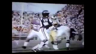 1976 NFC Championship Game
