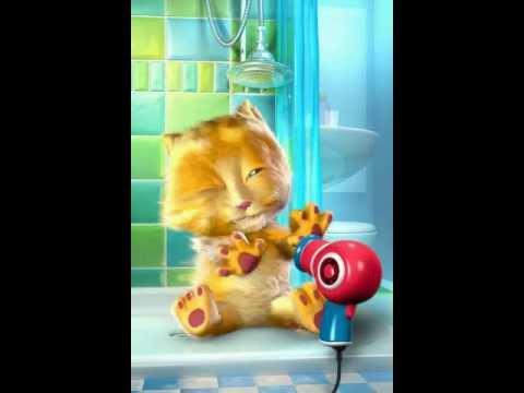 TalkingGinger (mèo hát 1 con vit)