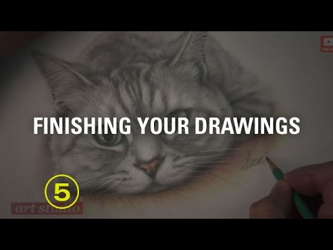 HOW TO DRAW A CAT: SIGNING YOUR DRAWING (Art Studio 78 excerpt)