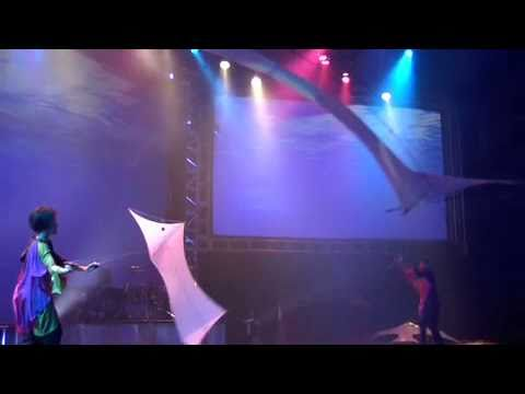 Art of the air indoor kite flying performace by for Indoor kite design