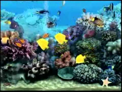 Fond d'écran pour télévision- Aquarium - YouTube