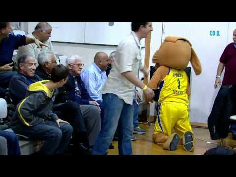 """""""Cão"""" persegue gato no meio de um jogo de basquetebol"""
