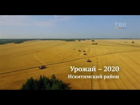 Урожай-2020. Искитимский район