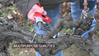 Felcotronic para viticultura