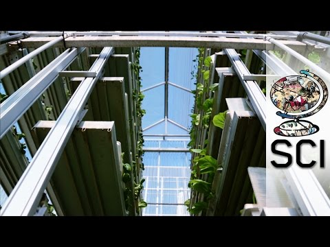 Feeding 9 Billion: Vertical Farming - Singapore