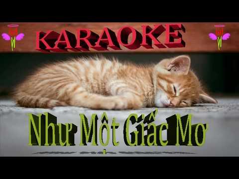 Như Một Giấc Mơ karaoke Mỹ Tâm