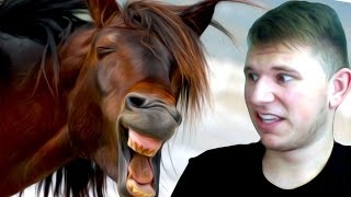 REACTING TO FUNNY HORSE VIDEOS - Duration: 8:09.