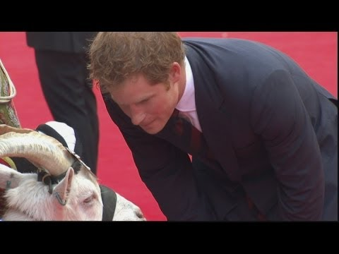 Prince Harry meets goat called Shenkin at Zulu screening