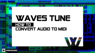 Waves Tune: How To Convert Audio To MIDI WinkSound