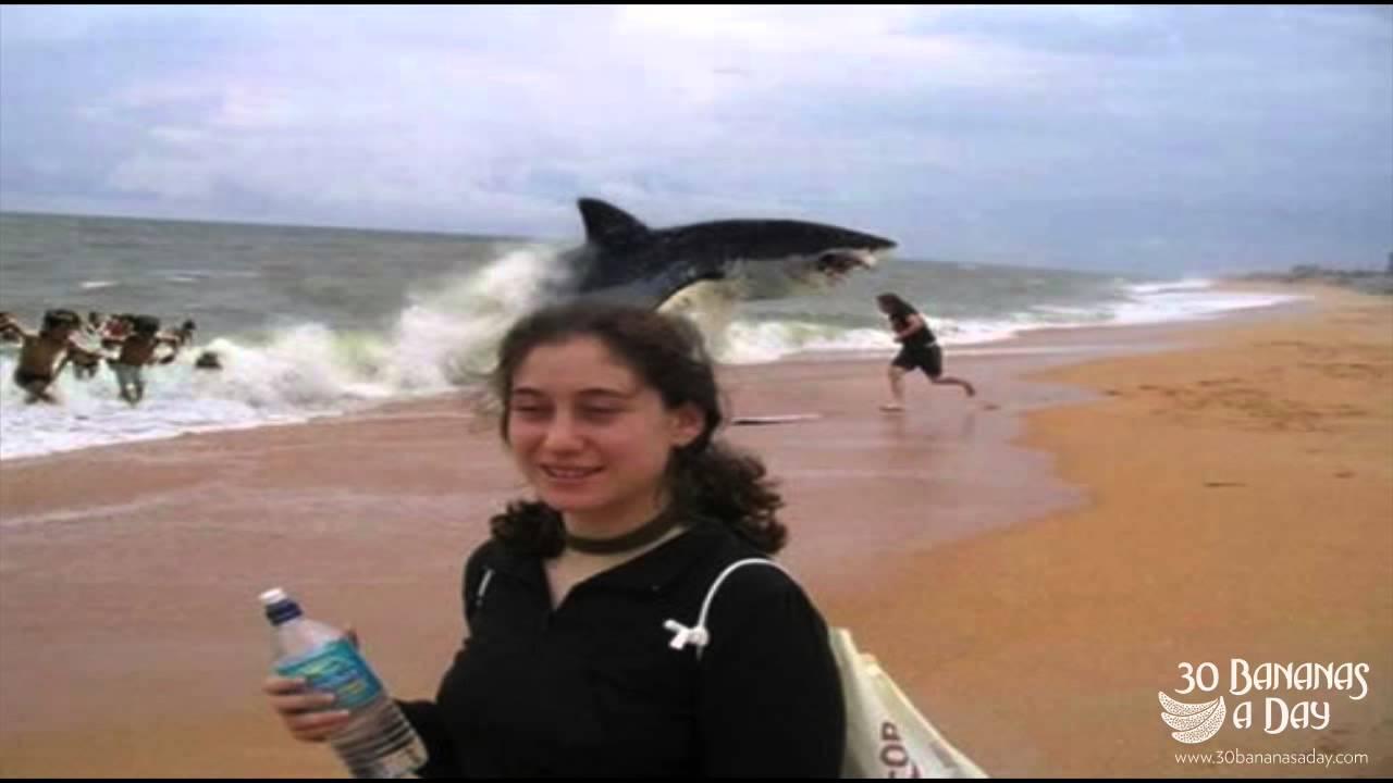 German Backpacker Shark Attack On Australian Beach : real or fake
