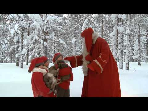 Santa Claus & husky dogs - huskies in Lapland - Rovaniemi in Finland