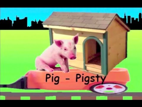 Learn Animals and their Houses Train - learning animal ...