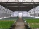 Invernaderos Steelway