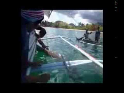 Community Centred Conservation C3 -  Dugong Death in Palawan, Philippines