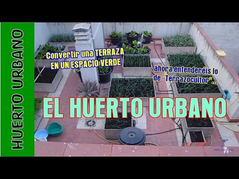 #Huertourbano. Macetohuerto. Hortalizas en maceta.