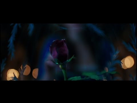Người Đẹp Và Quái Vật | Trailer