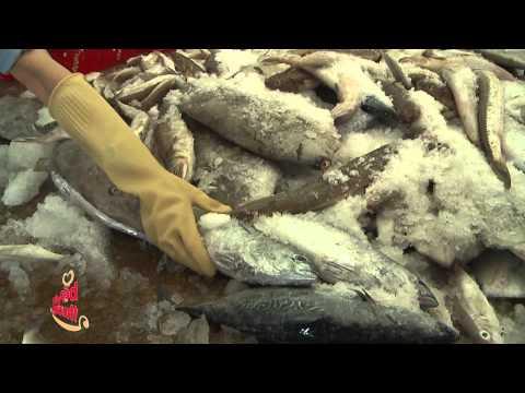 Tập 37 - Bếp Yêu Thương 2014 - Bếp ăn từ thiện Bệnh viện đa khoa tỉnh Bình Thuận