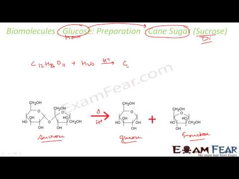 Chemistry Biomolecules part 5 Glucose preparation   property CBSE class 12 XII